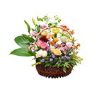 Modern Style Basket , flower shop,flower delivery,send flowers,flower arrangement, online flower shop,bouquet,flower vase,flower basket, wreath, table arrangement, supplementary food, fruit basket, gift basket, orchid, flower cake, monk's robe, crystal