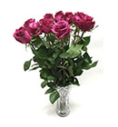 ดอกไม้สด></a><br>                             <a href=