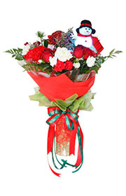 christmas flower,new year gift,christmas gift,flower shop,flower arrangements,send flowers,flower vase,flower basket,wreath