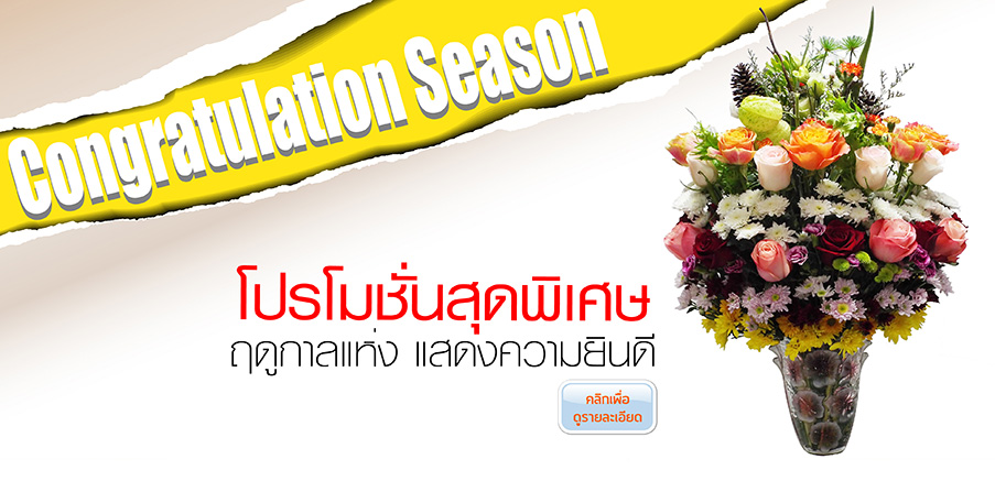 Congratulation Season