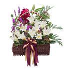 กระเช้าดอกไม้ มิสลิลลี่></a><br>                             <a href=