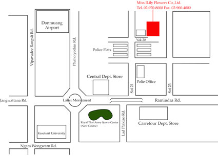 Miss Lily Office Map